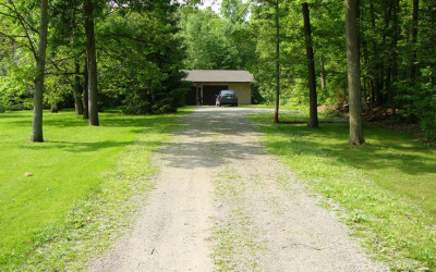 Driveway Grass And Weed Removal